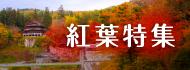 会津の三十三観音めぐりと、よりみち紅葉コース