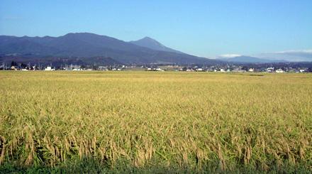 Yugawa Village