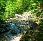 日本で最も美しい村 吾妻川渓流探勝路