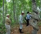 大自然を楽しむ 自然体験ツアー