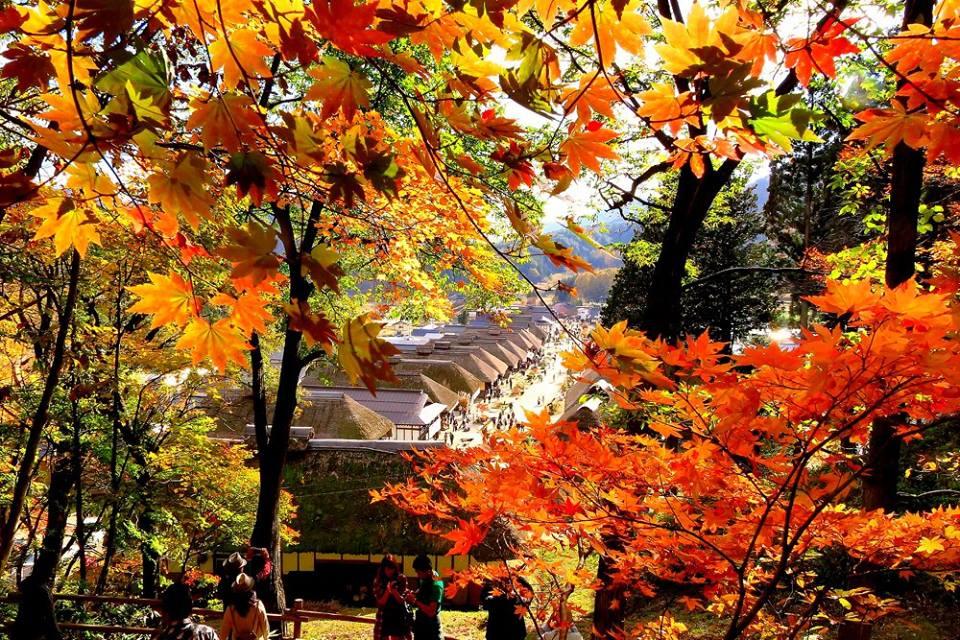 Oouchijyuku no Kouyou (Autumn leaves in Oouchijyuku)