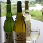 新鶴ワイン