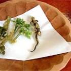 サンショウウオの天ぷら