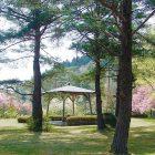 白鳳山公園(向羽黒山城跡)