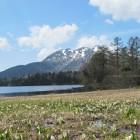 福島県檜枝岐から行く尾瀬国立公園