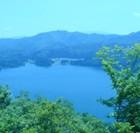 新緑の沼沢湖散策