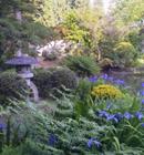 """金色の会津大仏とさつき等多くの花々で彩られる""""花の寺""""願成寺庭園"""
