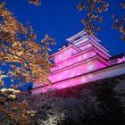 【中止】鶴ヶ城桜ライトアップ