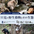 企画展「只見の野生動物とその生態」