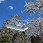 鶴ヶ城さくらまつり