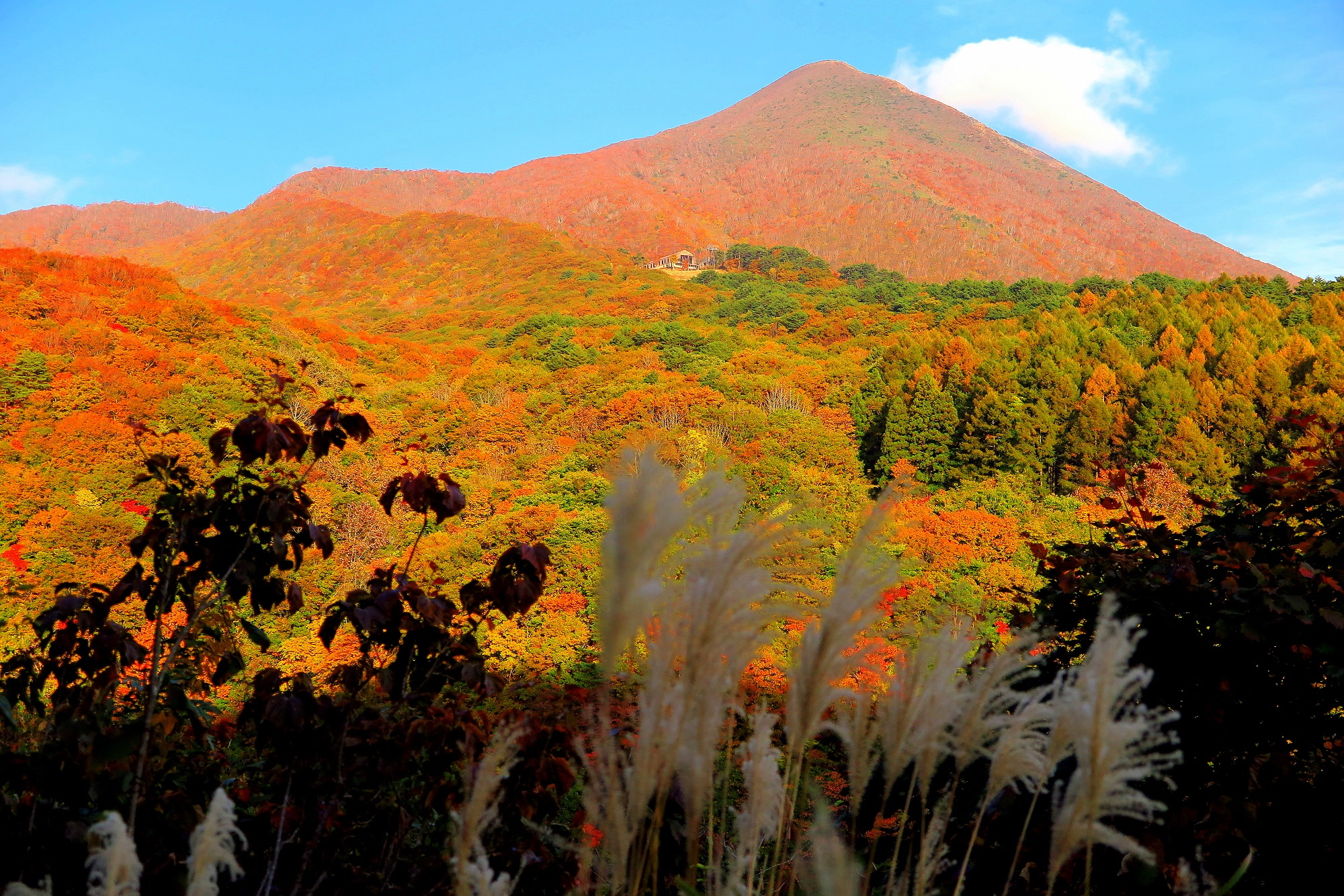 Mt. Bandai Gold Line
