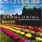「名入ざる菊園」開園