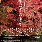 磐梯山慧日寺資料館庭園ライトアップ「紅葉と光の中で」